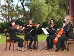 Adelaide String Quartet